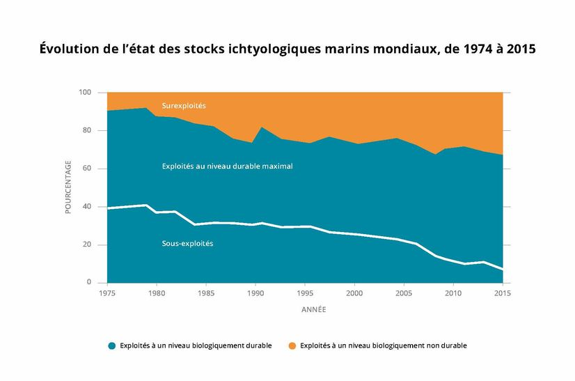 www.fao.org – Evolution de l'état des stocks ichtyologiques marins mondiaux http://www.fao.org/state-of-fisheries-aquaculture/fr/