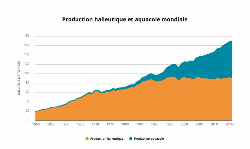 www.fao.org – 2018 Production halieutique et aquacole mondiale http://www.fao.org/state-of-fisheries-aquaculture/fr/